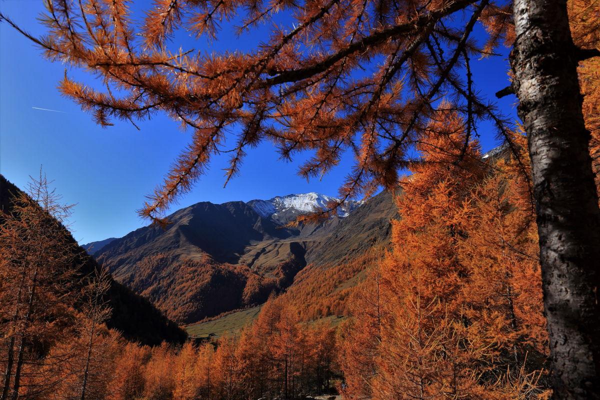 Autunno in Val di Fosse