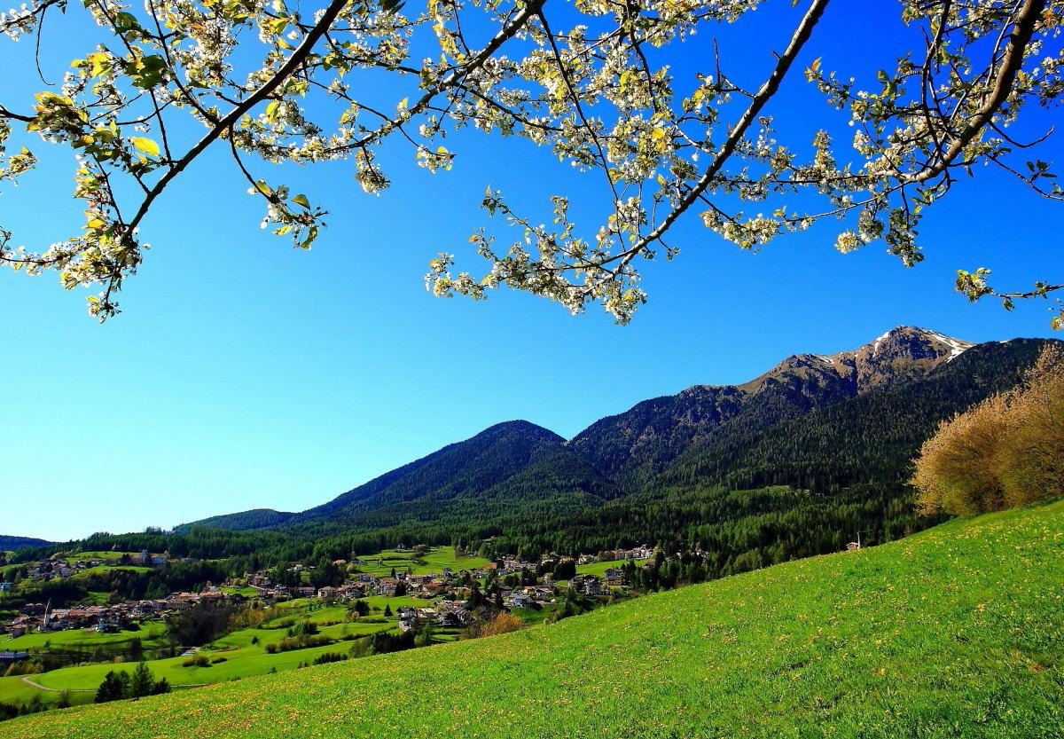 Varena primavera